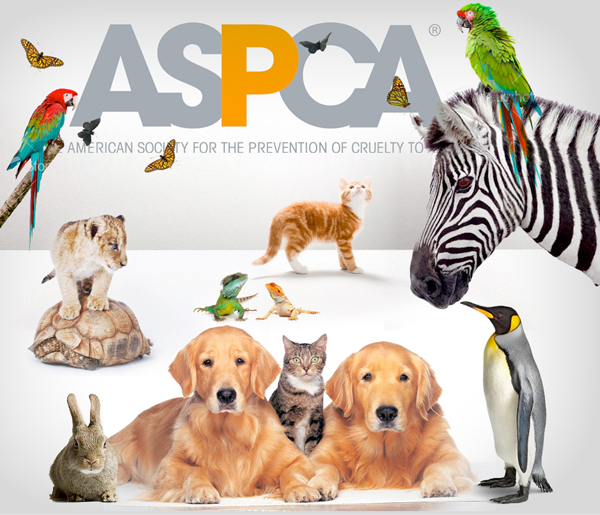 Image result for aspca