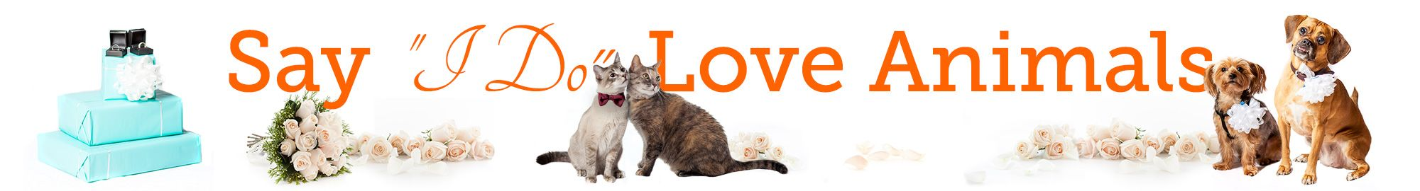ASPCA Wedding Campaign