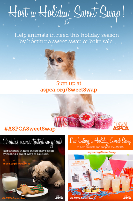 ASPCA Sweet Swap